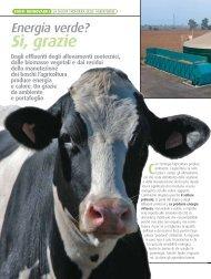 Dossier Lombardia Verde - Fiper