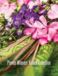 Annuals A-D - Proven Winners