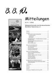 Nr. 41 - Hochschule Anhalt