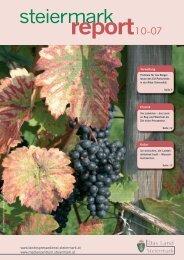 Steiermark Report Oktober 2007 - einseitige Ansicht (für kleinere
