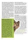 Heft 1/2013 - bei Hunde-logisch.de - Page 6