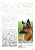 Heft 1/2013 - bei Hunde-logisch.de - Page 7