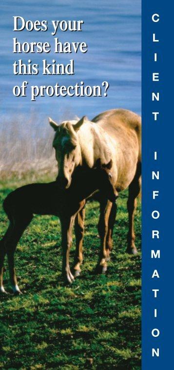 Equine Vaccination Brochure - Boehringer Ingelheim Vetmedica