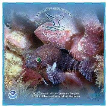 Dive into Education, May 13-14, 2005, Tybee Island, Georgia ...