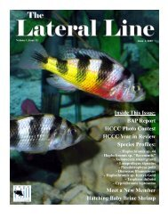 Lateral Line June 2005.pub - Hill Country Cichlid Club