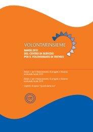 bando 2 - Treviso volontariato