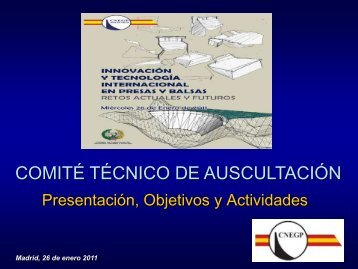 COMITÉ TÉCNICO DE AUSCULTACIÓN - spancold