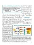 Die spezifische Immuntherapie (Hypo- sensibilisierung) bei IgE ... - Seite 3