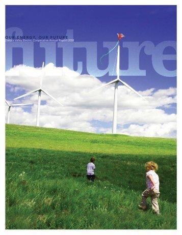 2008 Annual Report - Dakota Valley Electric Cooperative