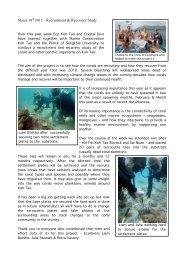 2011 – Recruitment & Recovery Study - Eco Koh Tao