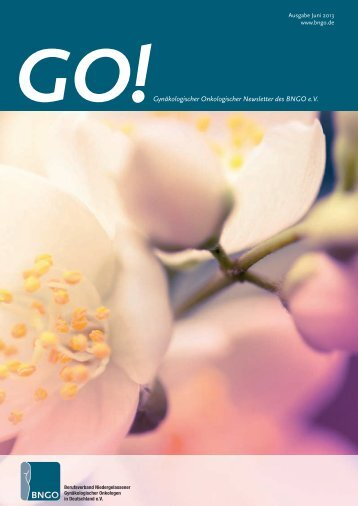 BNGO Newsletter Juni 2013