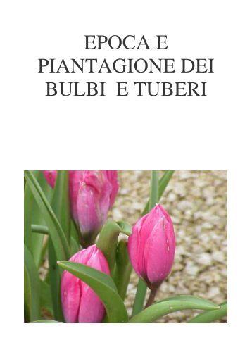 EPOCA E PIANTAGIONE DEI BULBI E TUBERI - Fiorista Mariangela