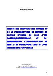 analyse des strategies des acteurs et de la problematique en ...
