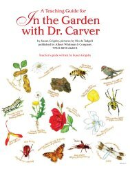 In the Garden with Dr. Carver - Albert Whitman & Company
