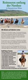 Prospekt,- Reiten die Nordsee entlang - Hanstholm Camping