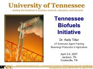 Tennessee Biofuels Initiative - Agricultural Policy Analysis Center