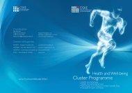 Cluster Programme