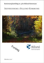 4 - Billund Kommune