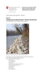 teil b: anwendung des risikokonzepts: prozess hochwasser - Planat