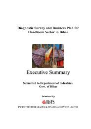 Executive Summary of Diagnostic Survey and Business Plan ...