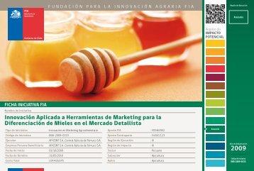 Innovación Aplicada a Herramientas de Marketing para la ... - Fia