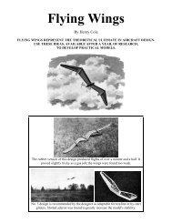 Flying Wings - UFSC Aerodesign