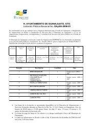200612111013480.Licitacion Publica Nacional No ... - Guanajuato
