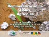 Remineralização de Solos Agricolas - Cetem