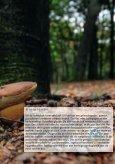 smaak=herinnering - t Schrijvertje - Page 7