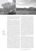 pdf-Download - Sven von Loga - Seite 3
