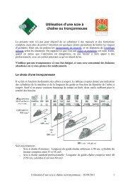 Utilisation d'une scie à chaîne ou tronçonneuse - CRPF Limousin
