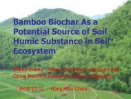 Bamboo Biochar As a Potential Source of Soil Humic Substance in ...