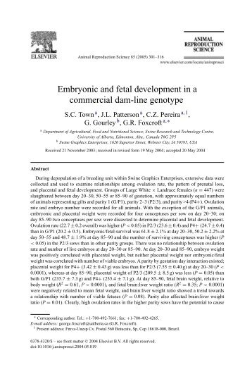 Embryonic and fetal development in a commercial dam-line genotype