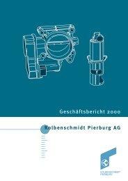Bericht des Vorstands - KSPG AG
