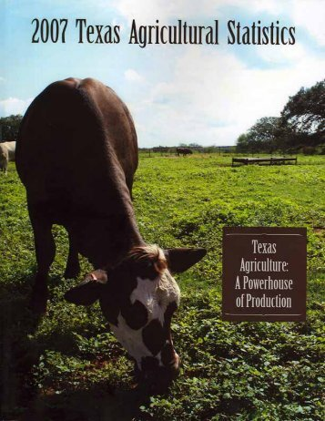 Texas Agricultural Statistics 2007 - National Agricultural Statistics ...