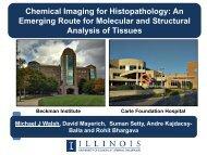 Chemical Imaging for Histopathology - Pathology Informatics 2014 ...