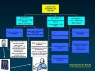 Organograma do Estudo