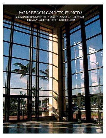 Comprehensive Annual Financial Report FY 2004 - Clerk ...
