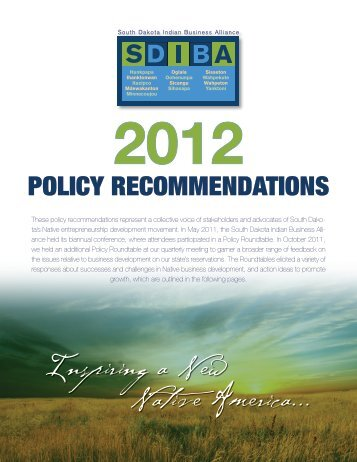 Download the policy recommendations. - South Dakota Indian ...