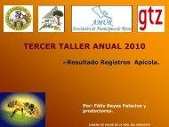 Presentacion EIAG.pdf - MASRENACE