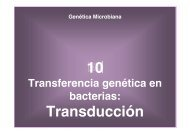 10 Transducción - BioScripts