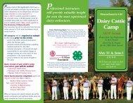 Dairy Cattle - Connecticut 4-H Program