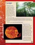 Sunlight - Page 5