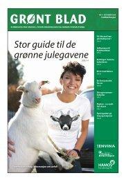 Stor guide til de grønne julegavene - classic.vitaminw.no
