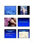 Ecological Principles Ecology The Scope of Ecology Population ... - Page 4