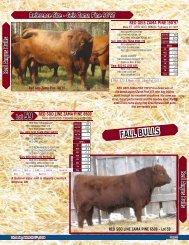 Pages 31-40 - SaskLivestock