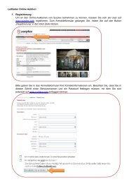 Leitfaden Online-Versteigerung - Surplex