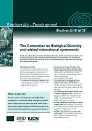 Biodiversity IN Development - University of the Western Cape