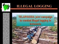 Illegal logging in Indonesia - Inece