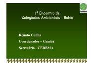 Colegiados Ambientais - SEMA - Secretaria do Meio Ambiente